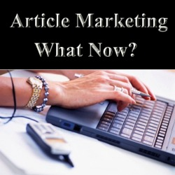 article marketing Google Panda